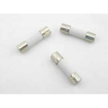 BUSSMANN S501 SERIES 2AMP FAST-ACTING, CERAMIC TUBE FUSES (Box of 100) BK-/S501-2A